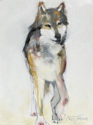 Mexican Gray Wolf, sketch