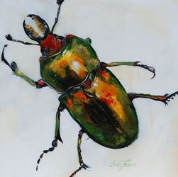 Golden Green Stag Beetle